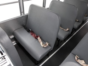 This bus only has seat belts that go across your thighs.