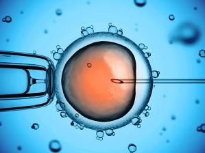 diocesephoenix-catholic-in-vitro-fertilization