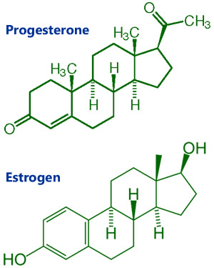 estrogen_and_progesterone