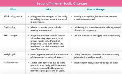 second-trimester-chart1.jpg