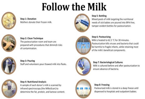 milk-process