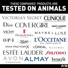 products-tested-on-animals-collage-v3